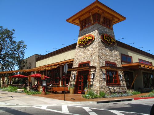 Lazy Dog Cafe Thousand Oaks Restaurants American Californian Conejo Valley 411 S Complete Business Directory